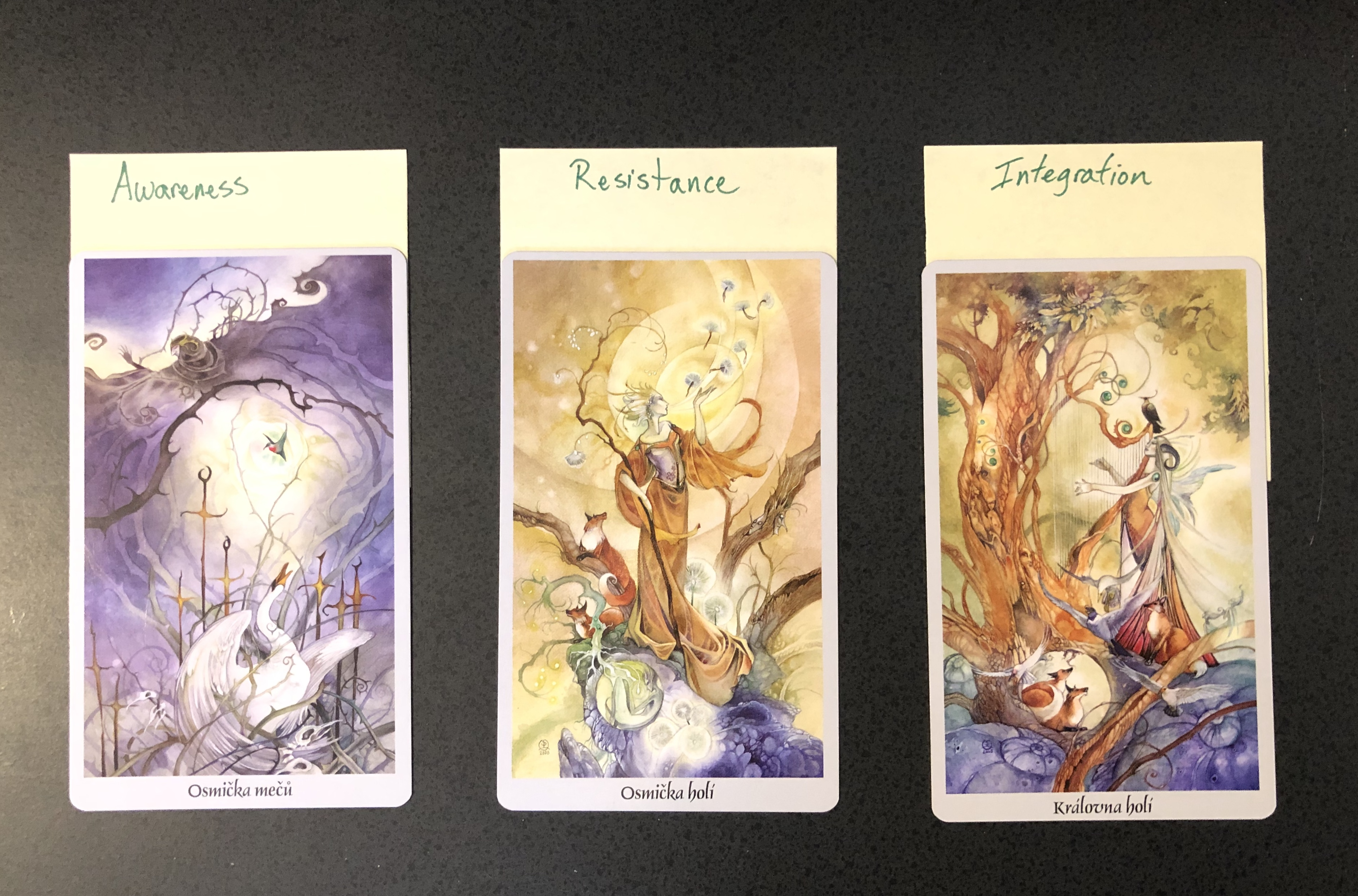 Images and links for the Untangling Tarot interview on Poema podcast