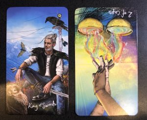 KIng of swords and reversed 2 of cups